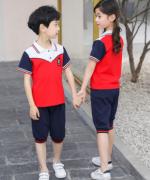 2020新款纯棉中小学生校服短袖儿童套装36-TL207