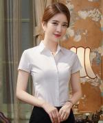 女短袖职业夏季韩版新款OL上衣面试寸衫工作服商务正装衬衣171-722D