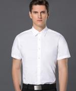 通勤修身商务职业式职业装正装领短袖衬衫30-8000